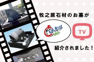 メディア紹介【とびっきり静岡】で牧之原石材のお墓が紹介されました!