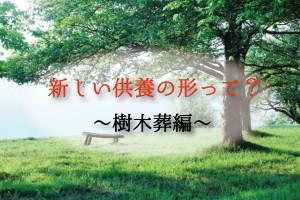 樹木葬とは?新しい供養の形ってどんなものがあるの?