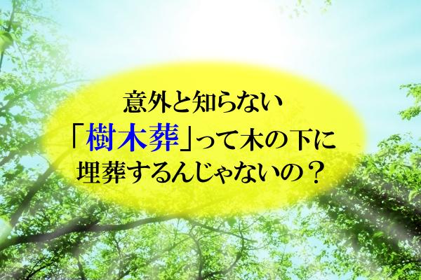 意外と知らない「樹木葬」って木の下に埋葬するんじゃないの?