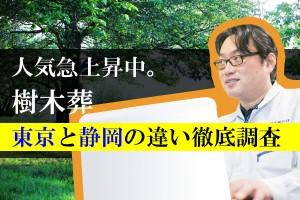 人気急上昇中。樹木葬東京と静岡の違い徹底調査