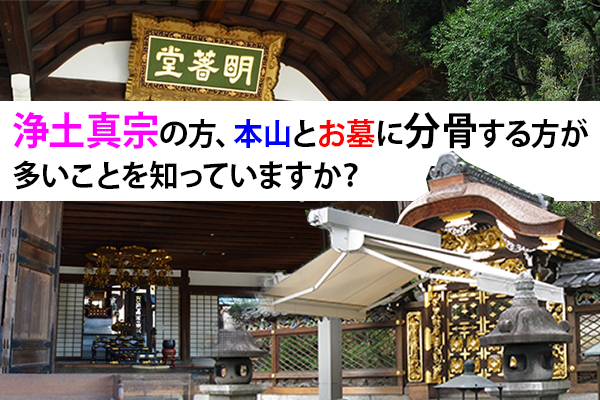浄土真宗の方、本山とお墓に分骨する方が多いことを知っていますか?