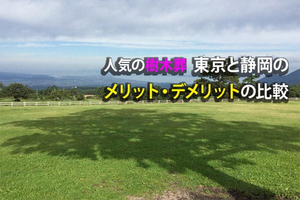 人気の樹木葬│東京と静岡のメリット・デメリットの比較