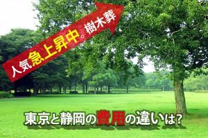 人気急上昇中。樹木葬東京と静岡の費用の違いは?