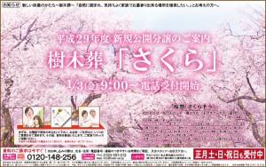 170103さくら葬広告