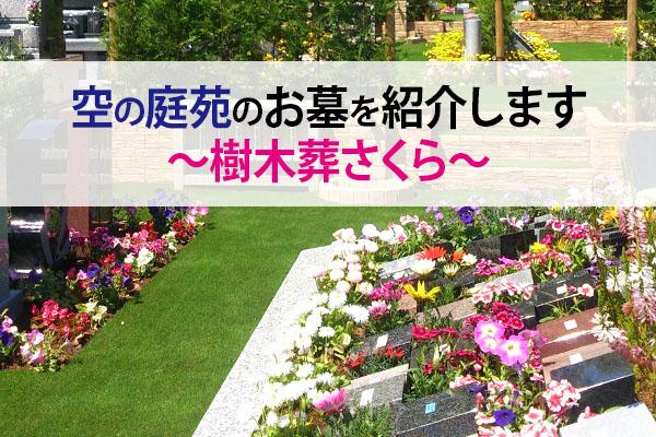空の庭苑のお墓を紹介します~樹木葬さくら~