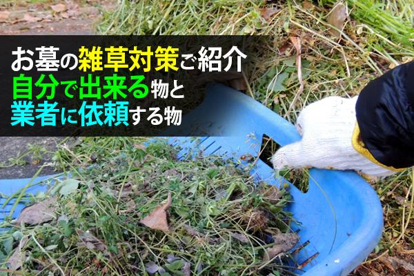 お墓の雑草対策ご紹介:自分で出来る物と業者に依頼する物