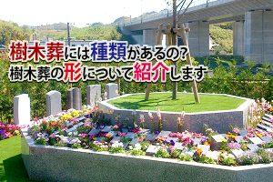 藤枝市 樹木葬|樹木葬には種類があるの?樹木葬の形について紹介します。