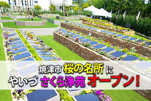 焼津の桜名所にやいづさくら浄苑オープン!
