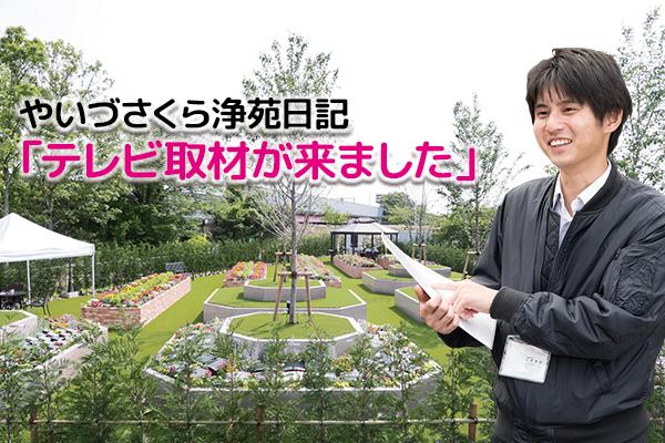 焼津市樹木葬霊園やいづさくら浄苑日記 テレビ取材が来ました!