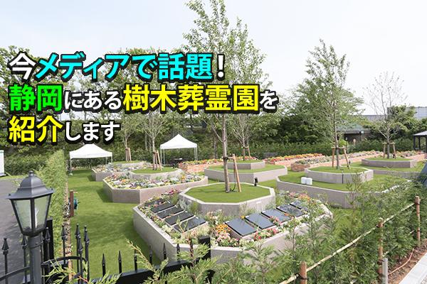 今メディアで話題!静岡にある樹木葬霊園を紹介します。