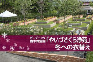 ガーデニング・樹木葬霊園「やいづさくら浄苑」冬への衣替え