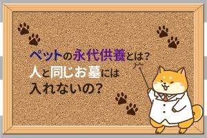 ペットの永代供養とは?人と同じお墓には入れないの?