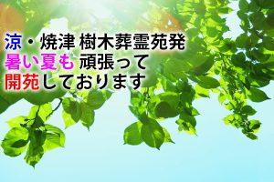 涼・焼津 樹木葬霊苑発・暑い夏も 頑張って 開苑しております。