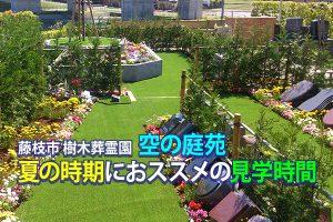 藤枝市樹木葬霊園  空の庭苑 夏の時期におススメの見学時間