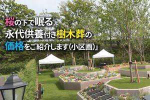 静岡県|やいづさくら浄苑桜の下で眠る永代供養付き樹木葬の価格をご紹介します(小区画)