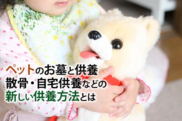 ペットのお墓と供養 散骨・自宅供養などの新しい供養方法とは|静岡県