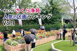 静岡 樹木 葬|ガーデニング ランキング(やいづさくら浄苑で人気の区画ランキングとそれぞれの特徴)Vol 1