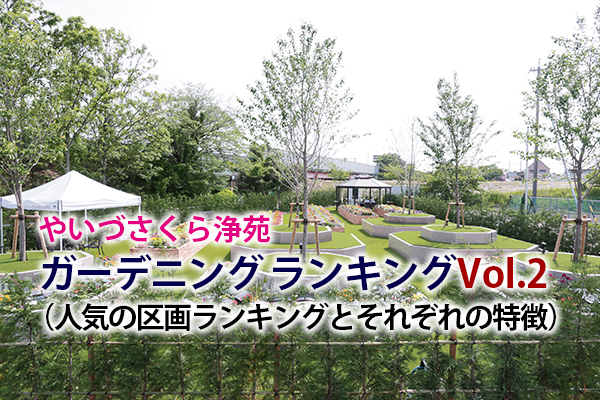 静岡 樹木葬|ガーデニング ランキング(やいづさくら浄苑で人気の区画ランキングとそれぞれの特徴)Vol 2