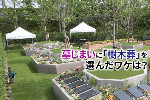 静岡発、 墓じまいに「樹木葬」を選んだワケは?