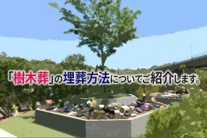 静岡県 霊園|「樹木葬」の埋葬方法についてご紹介します。
