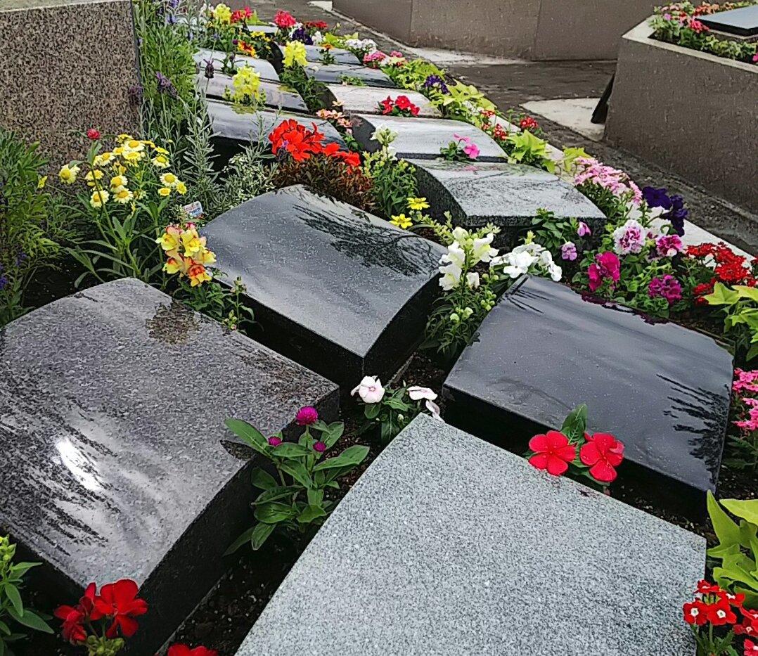 さくら葬(中区画)
